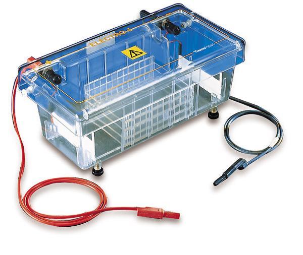 electrophoresis system rental