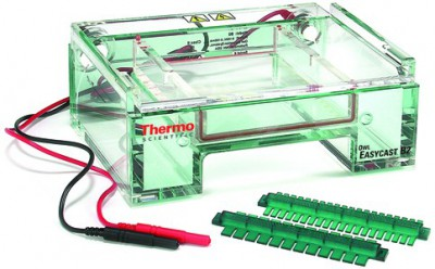 Electrophoresis System Rentals And Leases Kwipped